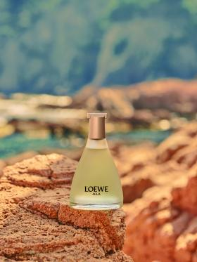 LOEWE Perfumes, se une a la Asociación Vellmarí para lanzar un proyecto de preservación del ecosistema mediterráneo.