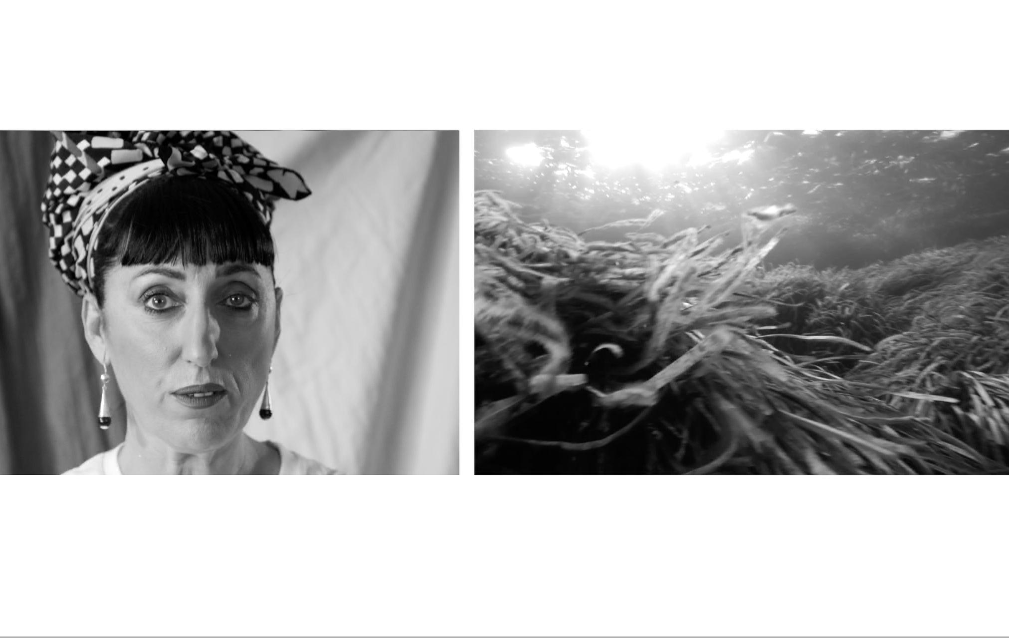 LOEWE Perfumes une a actores, cantantes, influencers, chefs y empresarios en una acción de crowdfunding para la preservación del Mediterráneo y la Posidonia, en colaboración con la Asociación Vellmarí