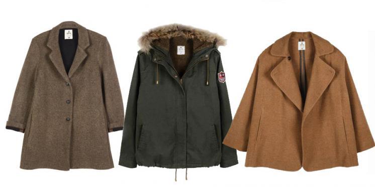 Brownie abrigos