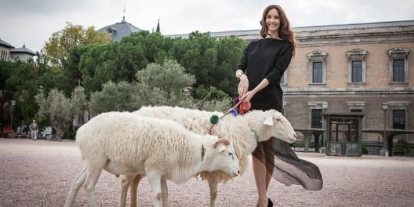 Campaña por la lana